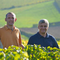 Domaine Daniel Reverdy & Fils - Cyrille Reverdy