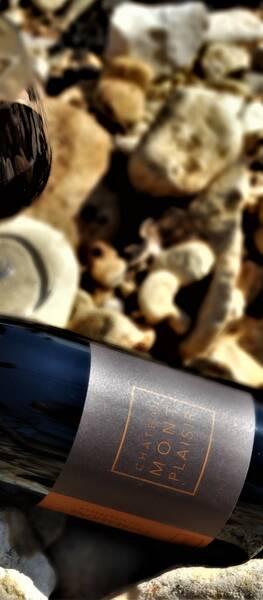 Château MontPlaisir  - cru vinsobres expressions - Rouge - 2018