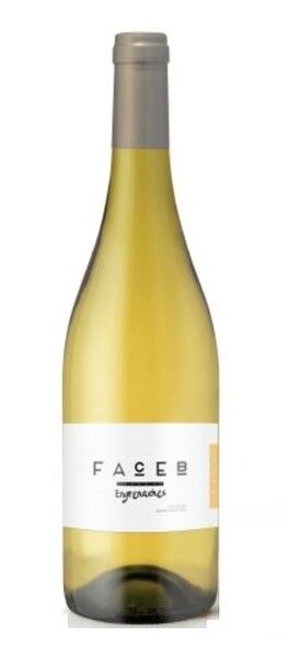 Face B - engrenaches - Blanc - 2018