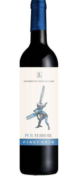 Domaine Sainte Luchaire - pur terroir pinot noir - Rouge - 2019