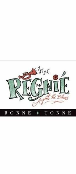 Domaine de la Bonne Tonne - régnié - Rouge - 2020