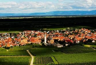 Vue sur Pfaffenheim du Domaine Freudenreich