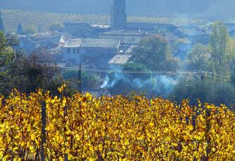 Vue sur le village depuis le domaine J.Laurens