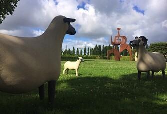 Faune & Flore au Domaine Rollan de By