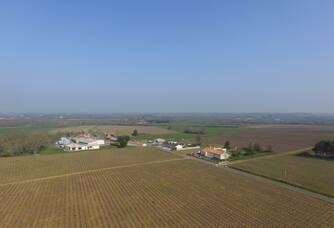 Vue aérienne du Vignoble Sylvie Daheron