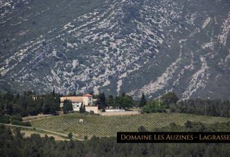 Vue aérienne du Château Cazal Viel