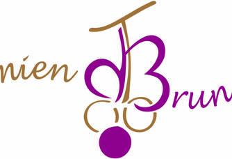 Logo du Domaine Damien Bruneau