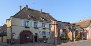 Domaine Freyburger Marcel(Alsace) : Visite & Dégustation Vin