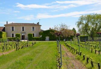 La propriété du Château la Renommée