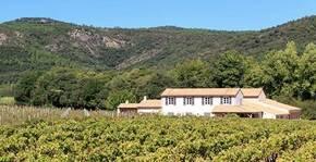 Domaine de la Pertuade (Provence) : Visite & Dégustation Vin