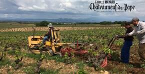 Vignobles Mayard - La laboure manuelle