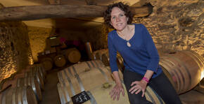 Domaine de Perreau(Sud-Ouest) : Visite & Dégustation Vin