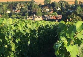 Le Village de Pierry classé en Premier Cru