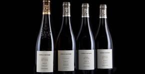Château Soucherie(Loire) : Visite & Dégustation Vin