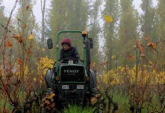 Travail des sols à l'Automne