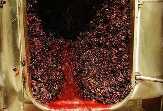 écoulage de notre rosé des riceys
