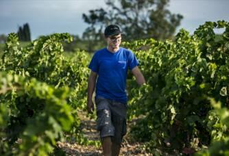 Jacques-Emile RUHLMANN dans notre vigne de Carignan aux abords de Château Valmont.