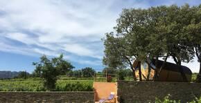 Le Rocher des Dames(Vallée du Rhône) : Visite & Dégustation Vin
