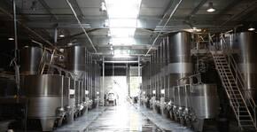 Château Les Amoureuses(Vallée du Rhône) : Visite & Dégustation Vin