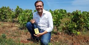 Les vigneron dans ses vignes