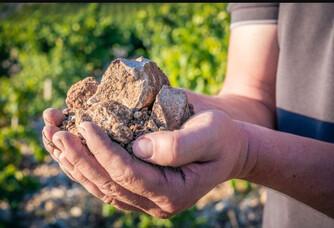 Le terroir du domaine d'Ourea