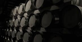 Château Camplazens(Languedoc) : Visite & Dégustation Vin