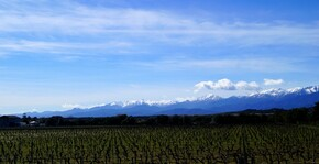 Clos Canereccia - Le paysage montagneux qui borde la vigne