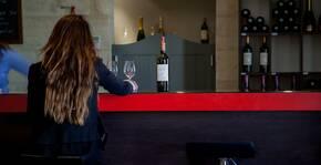 Château Ambe Tour Pourret(Bordeaux) : Visite & Dégustation Vin