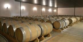 Château du Payre (Bordeaux) : Visite & Dégustation Vin
