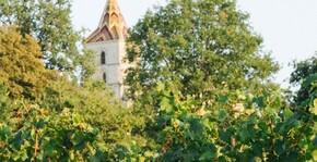 Château Bel Air La Royère(Bordeaux) : Visite & Dégustation Vin
