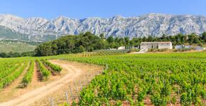 Château Gassier(Provence) : Visite & Dégustation Vin