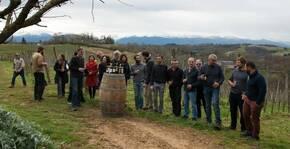 Clos Lapeyre(Sud-Ouest) : Visite & Dégustation Vin