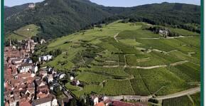 Domaine Ostermann André et Fils(Alsace) : Visite & Dégustation Vin