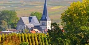 Champagne Delaunois-Chanez(Champagne) : Visite & Dégustation Vin