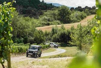 Domaine de Baronarques - Balade dans le vignoble
