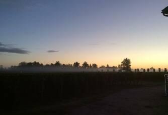 Château La Croix Meunier - Les vignes au coucher de soleil