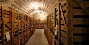 Champagne DAGONET & Fils(Champagne) : Visite & Dégustation Vin