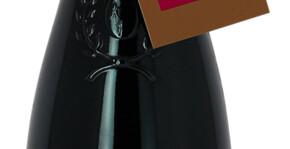 Domaine Dittière(Loire) : Visite & Dégustation Vin