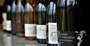 Château de Minière(Loire) : Visite & Dégustation Vin