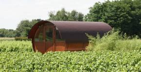 Domaine La Porte Dorée(Loire) : Visite & Dégustation Vin