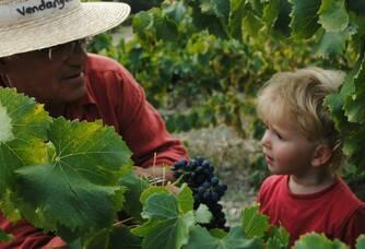 Pierre Arnaud et son petit-fils dans les vignes de la Ferme des Arnaud