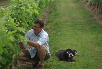 L'entretien des vignes du Château Le Sepe par Dominique Guffond