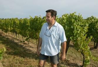 Balade entre les vignes du Château Laurou