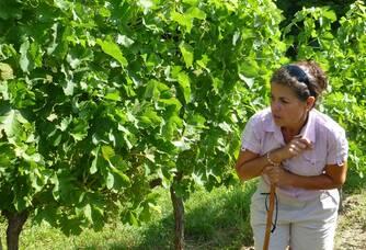 Nathalie dans les vignes du château Boutinet